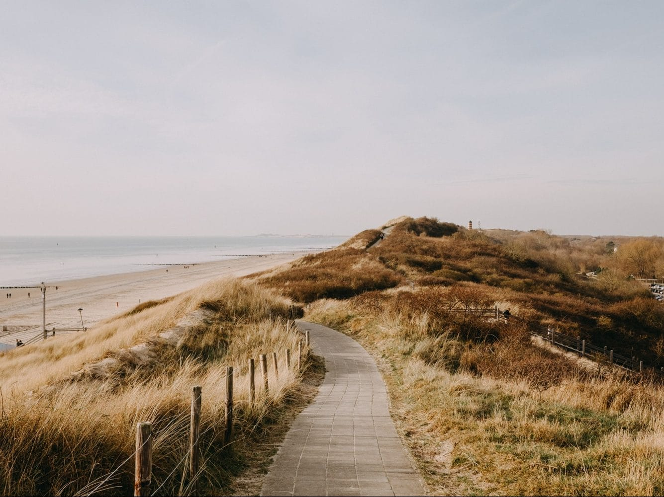 Duinpad Dishoek Strand